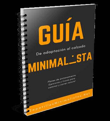 Guía adaptación minimalista en pdf